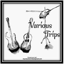Various Trips logo lettre.